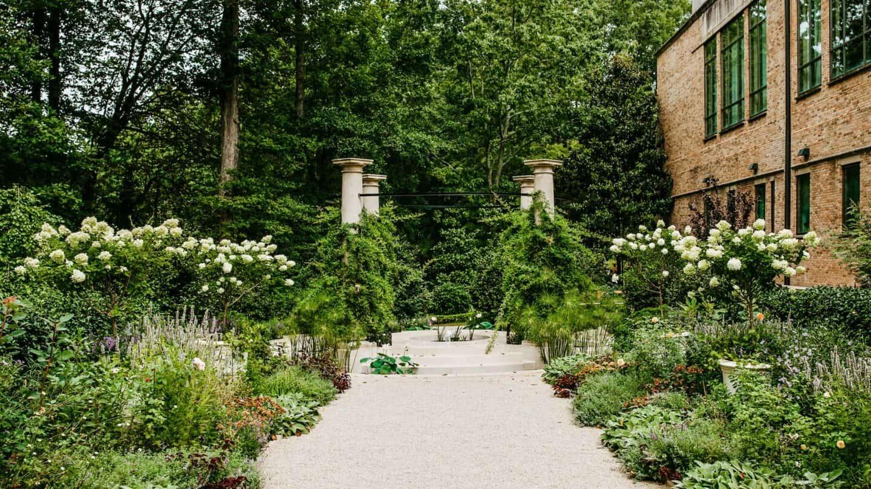 Olguita's Garden