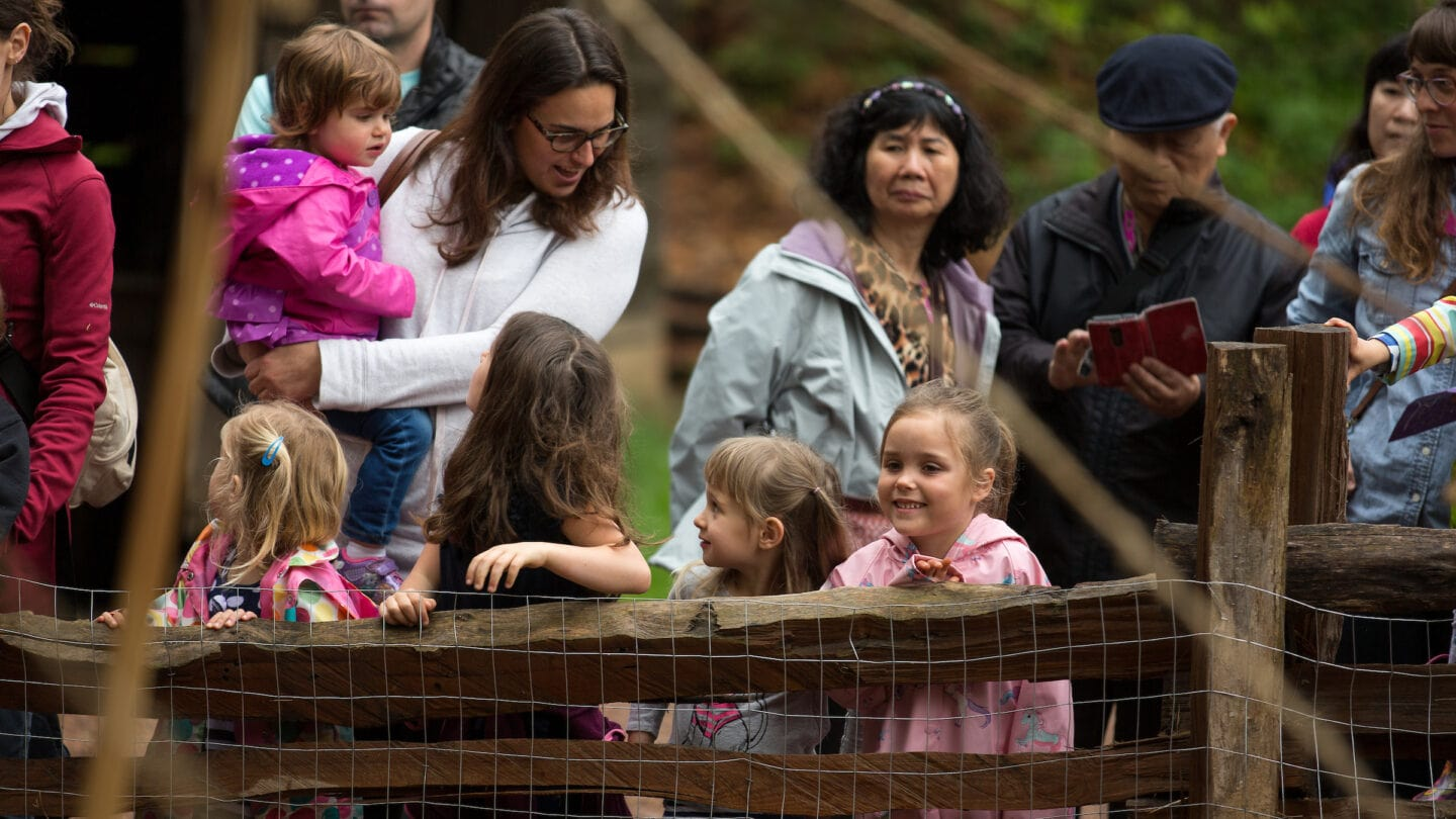 kids and parents at Sheep to Shawl event