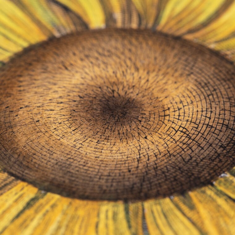 sunflower botanical print, close up